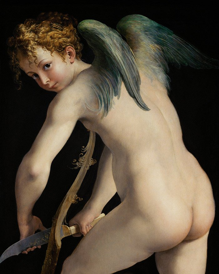Fig 7. Detail from Parmigianino's Amor