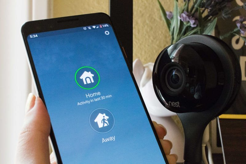 How to Prepare for the Changes Coming to Your Nest Account
