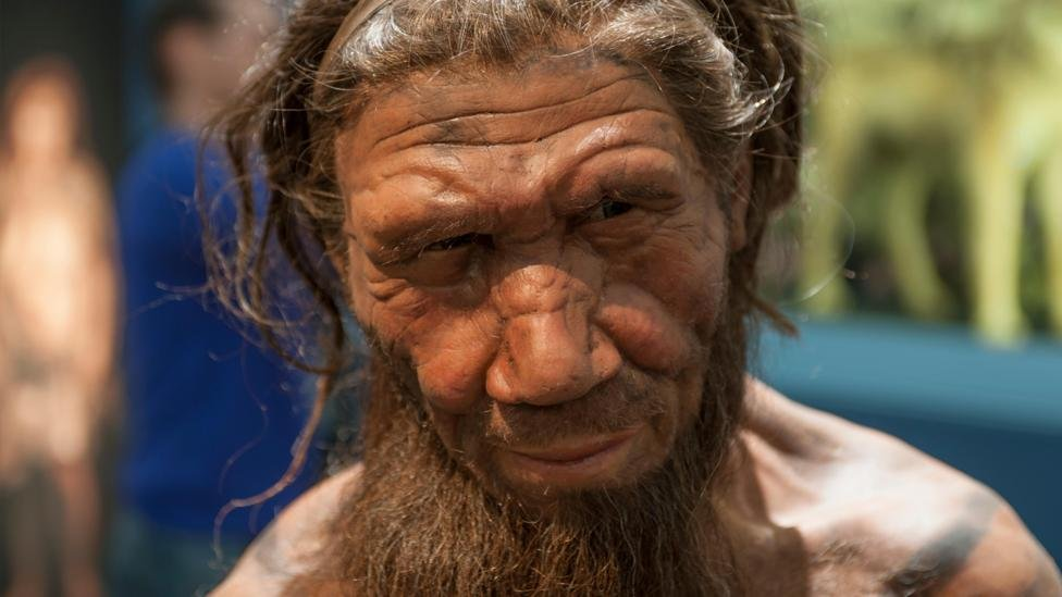 Large parts of the Neanderthal genome still lives on in modern humans