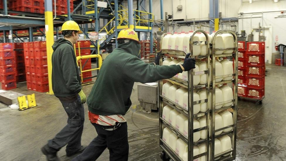 Workers load milk onto trucks at the Oakhurst dairy plant in 2013. Credit: Getty Images.