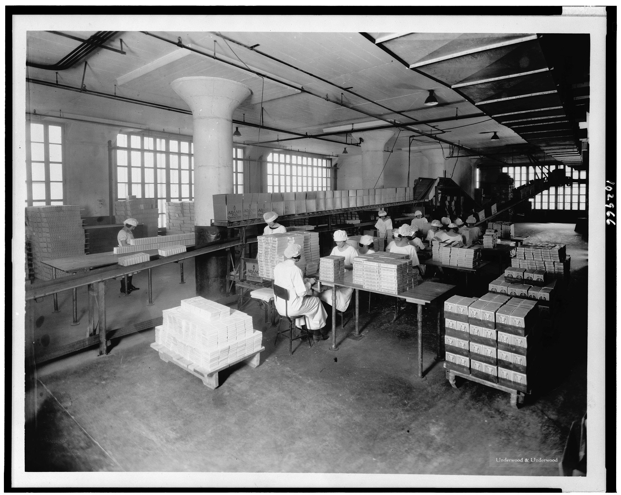 Gum packing department at the American Chicle Company plant, circa 1923. From the Library of Congress / Wikimedia Commons / Public Domain.