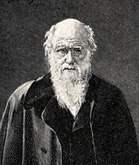 Charles Darwin thrived on spinning multiple plates