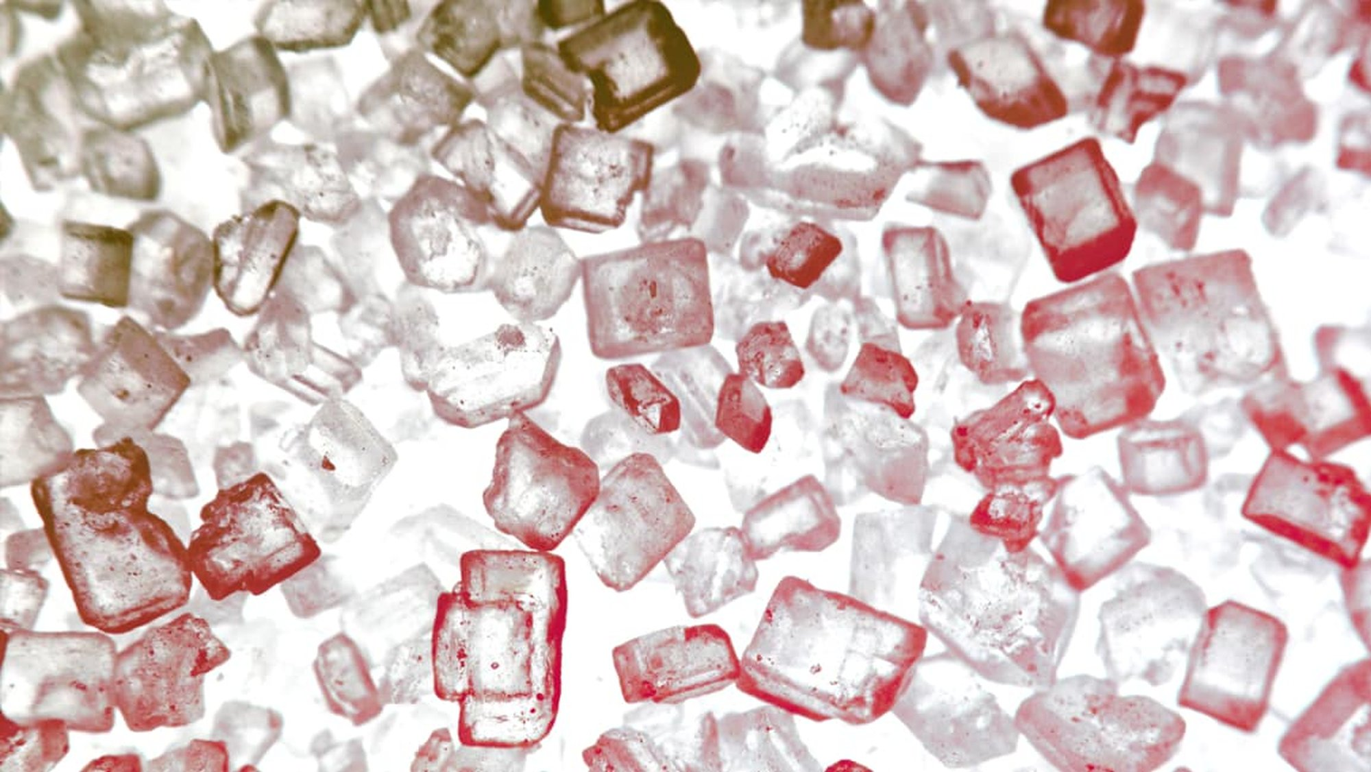 How Giving Up Refined Sugar Changed My Brain -  - Pocket