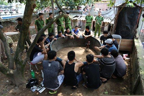 Bắc Ninh: Bắt quả tang 15 đối tượng chơi đá gà, thu giữ hàng chục triệu đồng