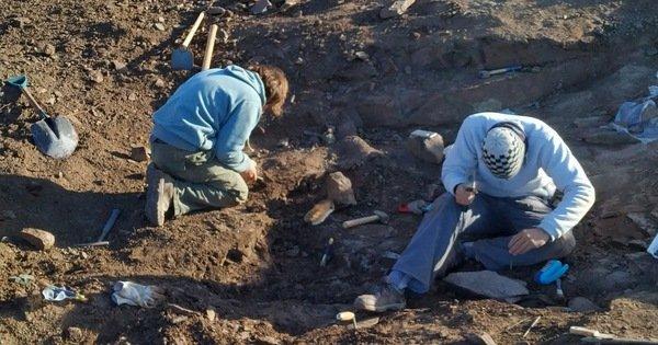 Phát hiện hóa thạch khủng long ăn thịt cuối cùng trên trái đất