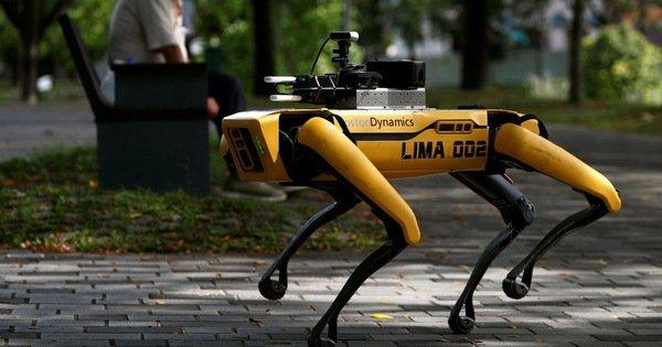Singapore đưa chó robot ra công viên nhắc người dân giãn cách xã hội