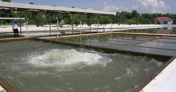 Đà Nẵng miễn, giảm tiền sử dụng nước sạch cho nhiều người dân bị ảnh hưởng COVID-19
