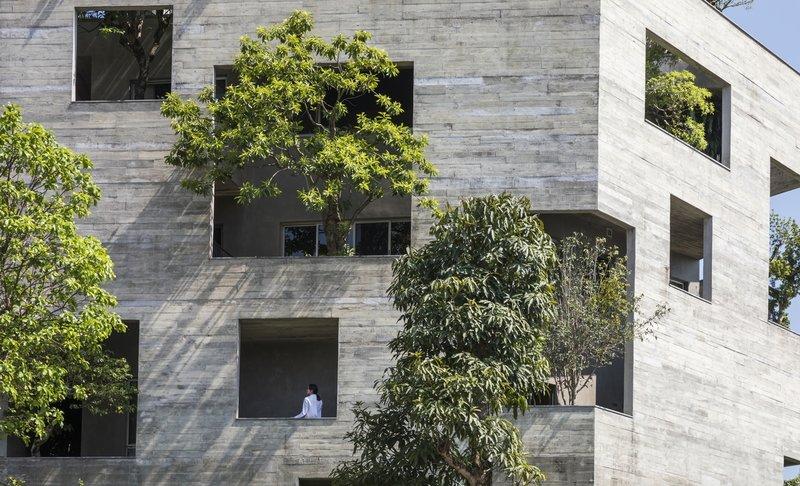 Nhà năm góc chứa 'rừng cây'