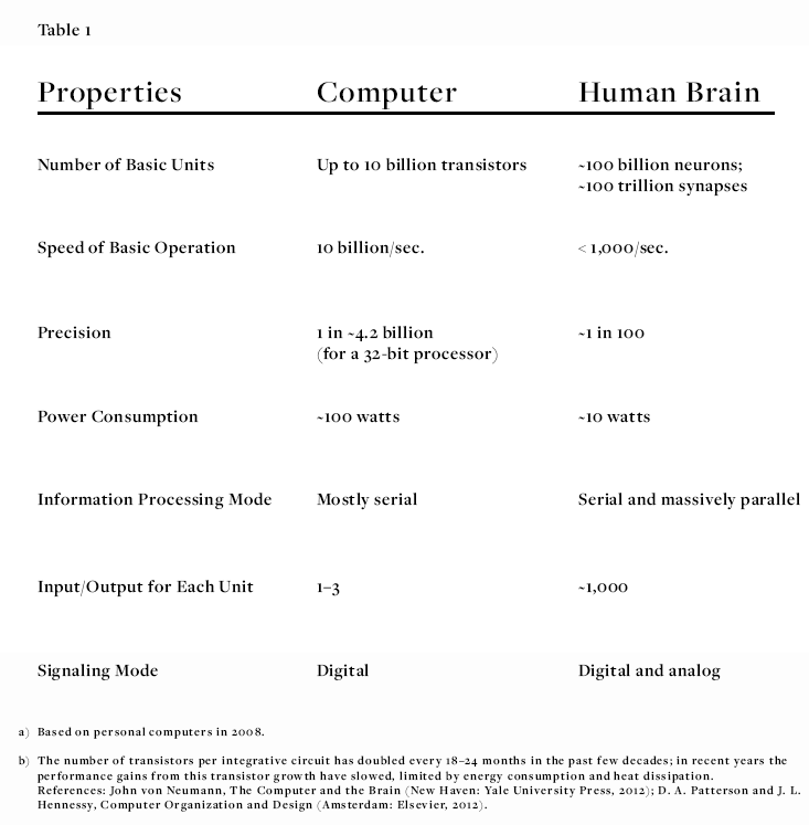 Why Is The Human Brain So Efficient