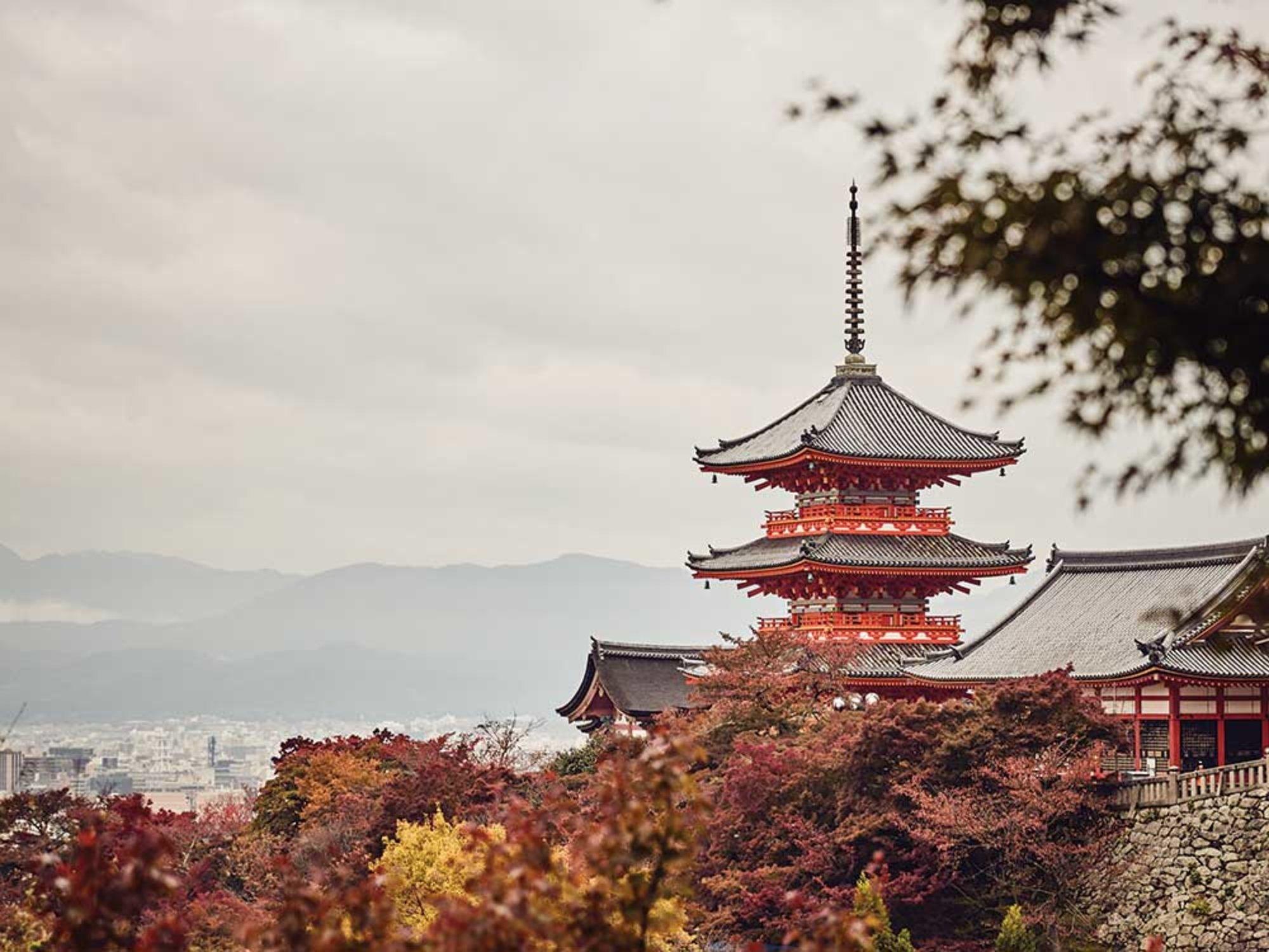 kyoto_temples-seasons1_1000x750.jpg