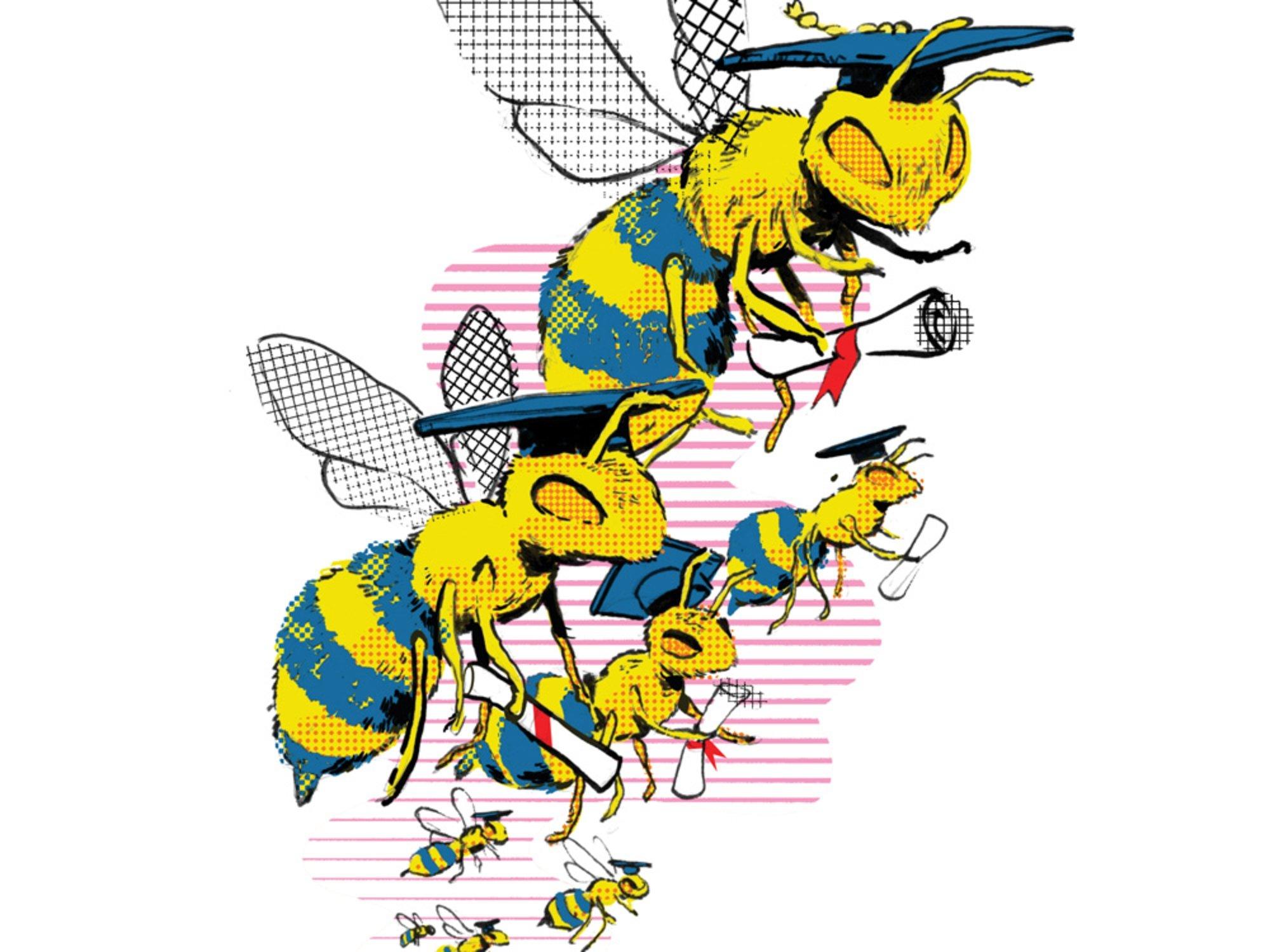 bee-intelligence.jpg