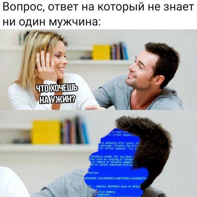 15631531.jpg